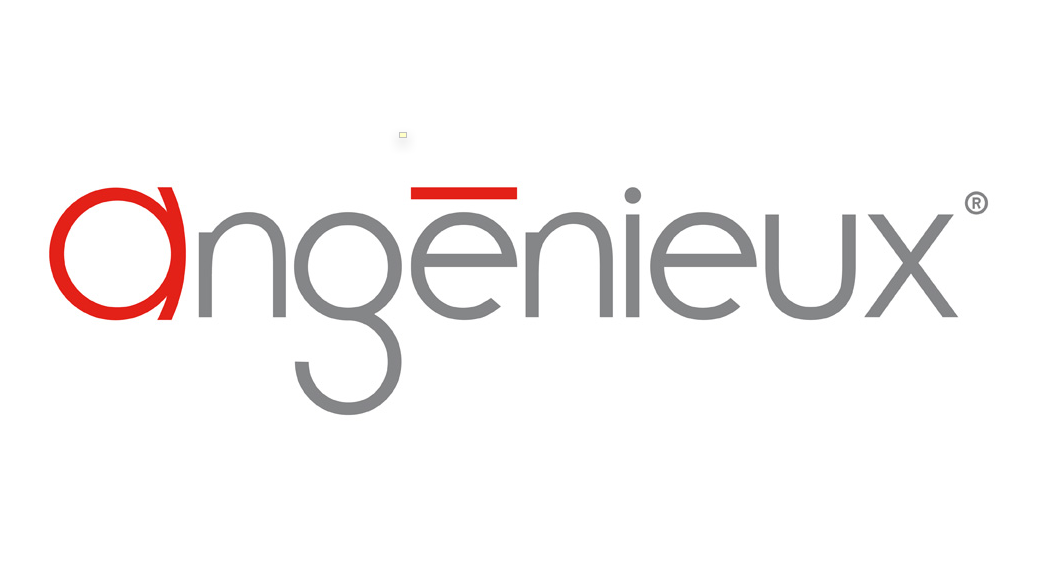 angenieux full frame lens